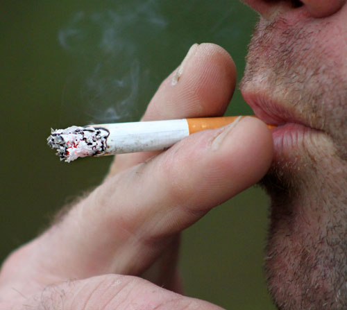 morguefiles tabaqusimo
